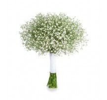 G-Ray-Florist-Online-Flower-Delivery-Kl-Penang-Catch My Baby's Breath